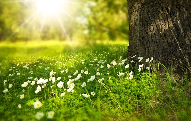 Health Tips For Spring