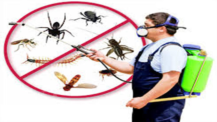 Best Ways To control pests